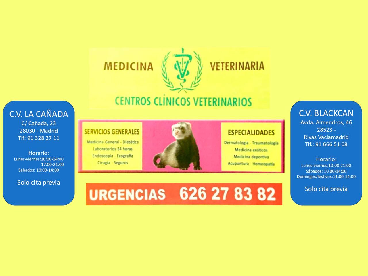 Colaboración Centros clínicos veterinarios La Cañada y Blackcan