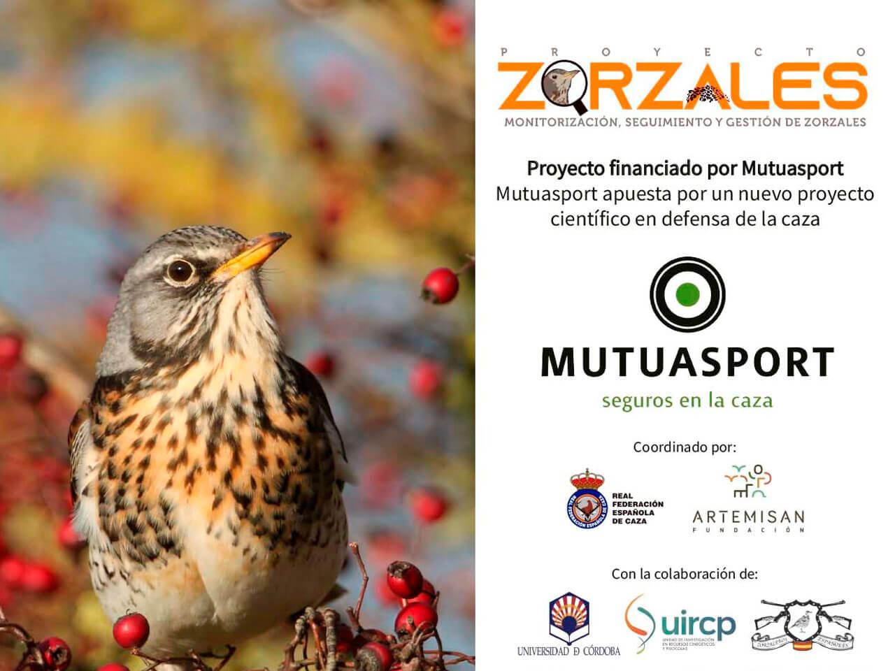 Información detallada del proyecto zorzales