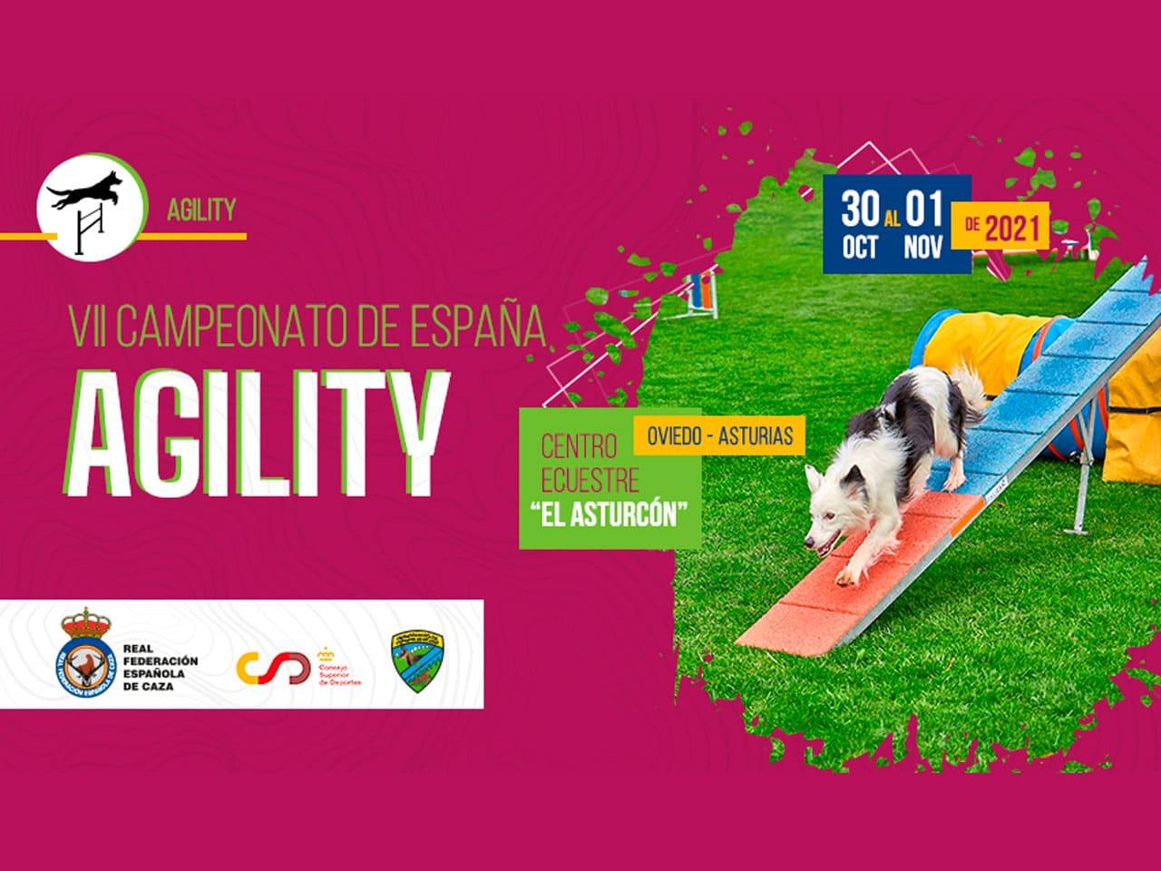 VII Campeonato de España Agility
